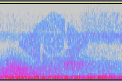 fortnite spectrogram
