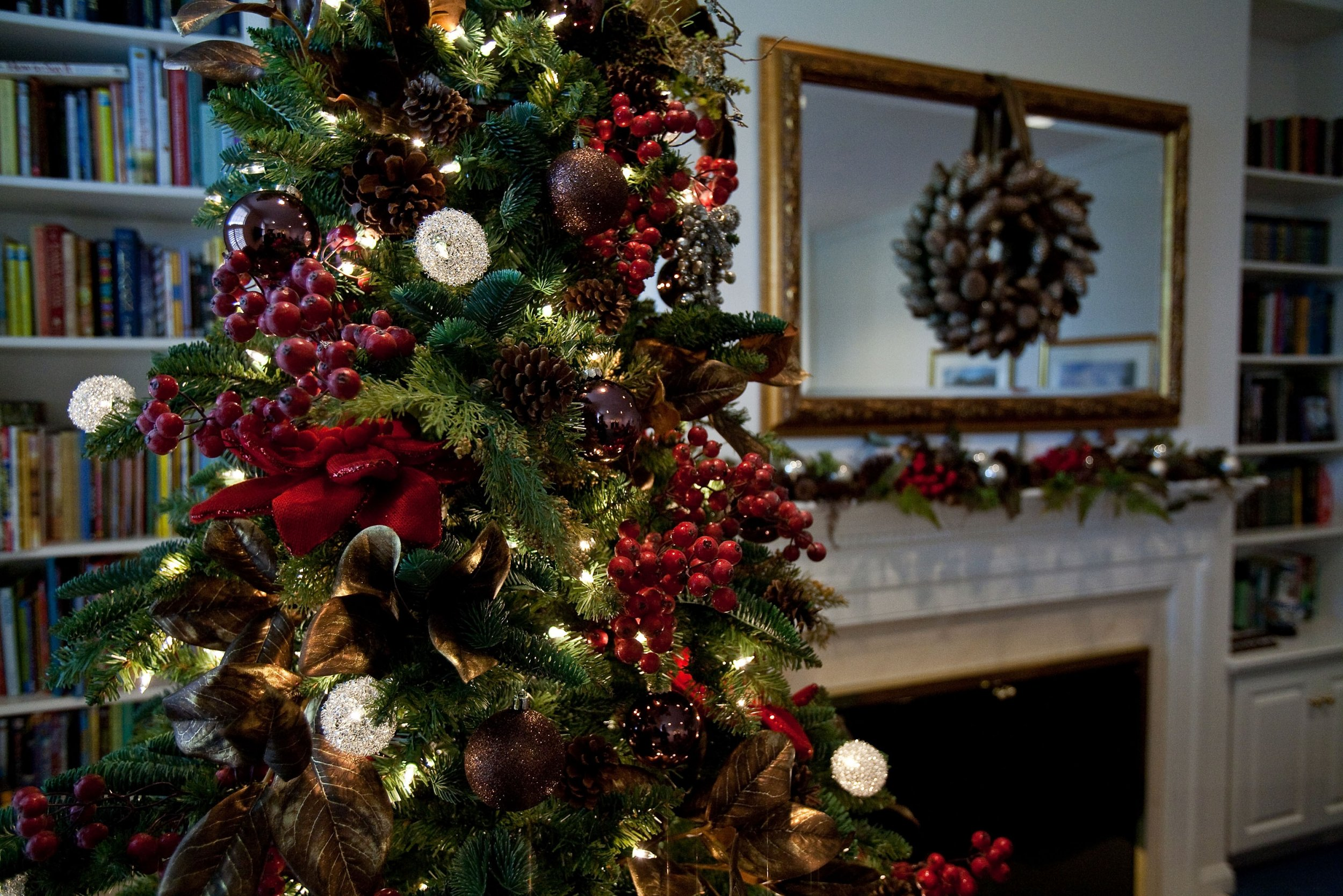 christmas tree inside house