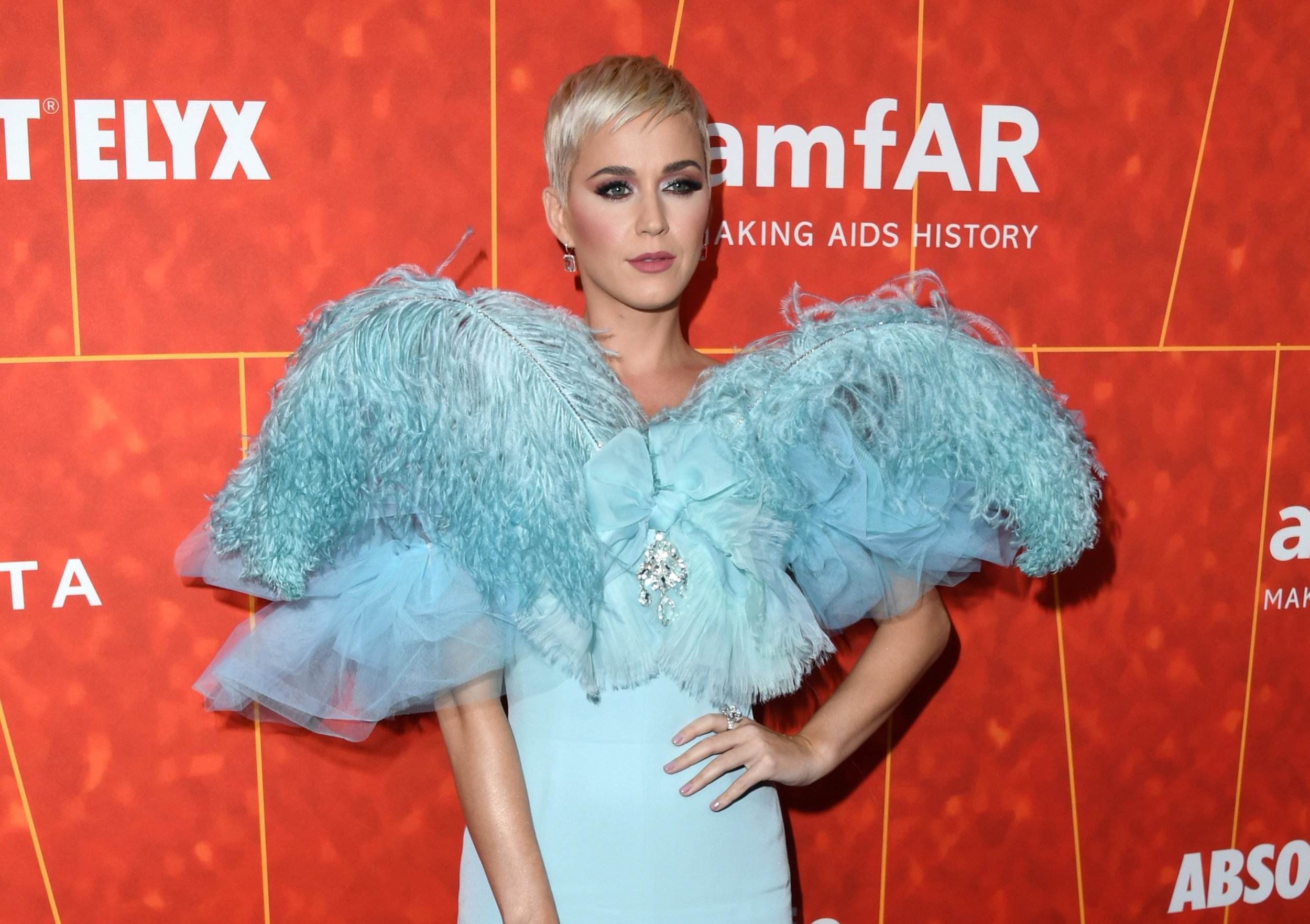 Katy Perry Testimony Revealed