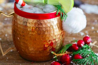 25 Booze - Moscow Mule Copper Mugs