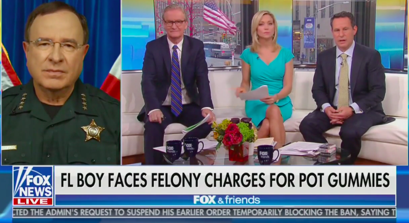 fox, news, guest, marijuana, killing, weed