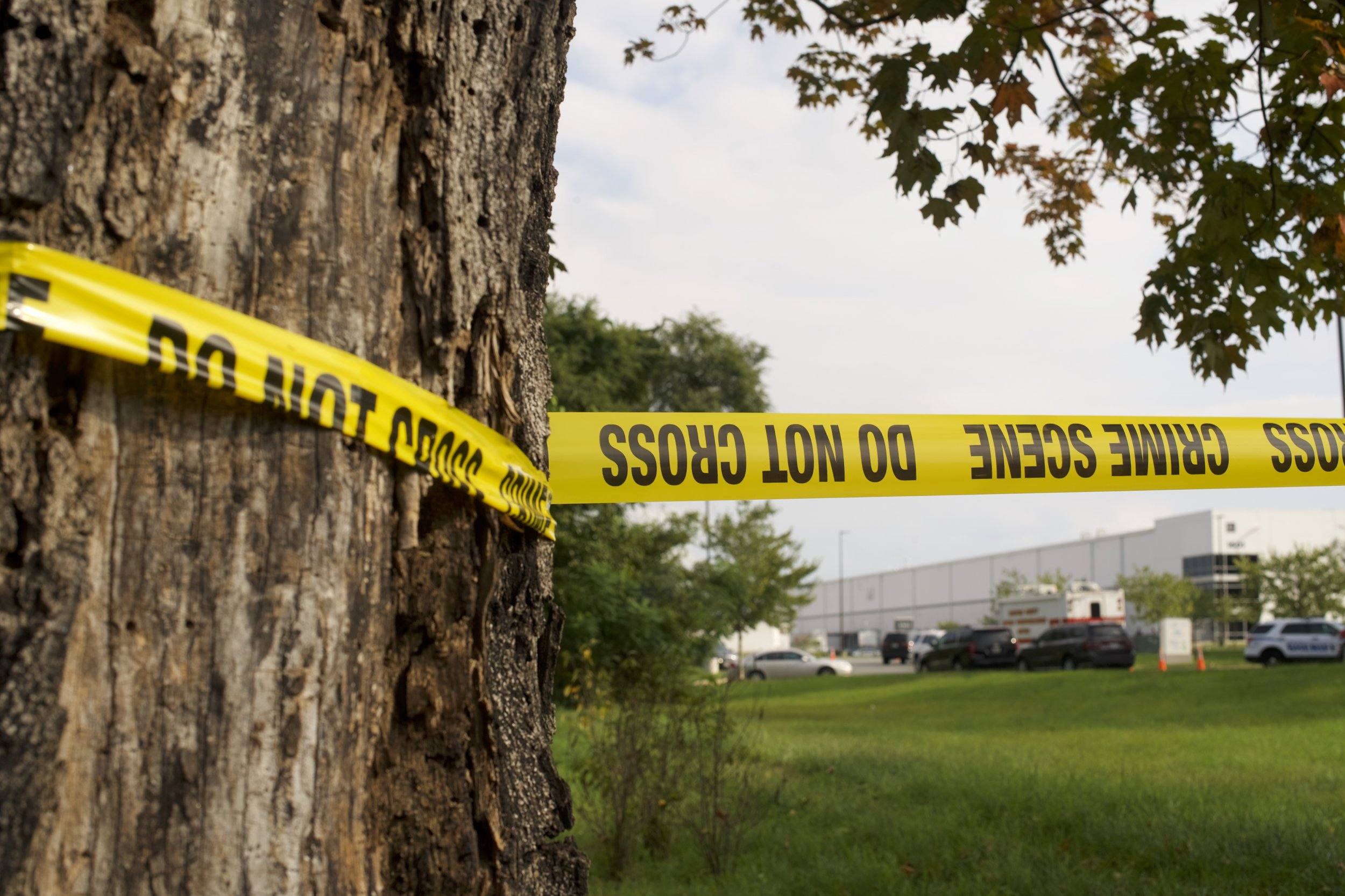 3-Year-Old Boy Shoots Sister