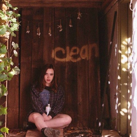Clean Soccer Mommy