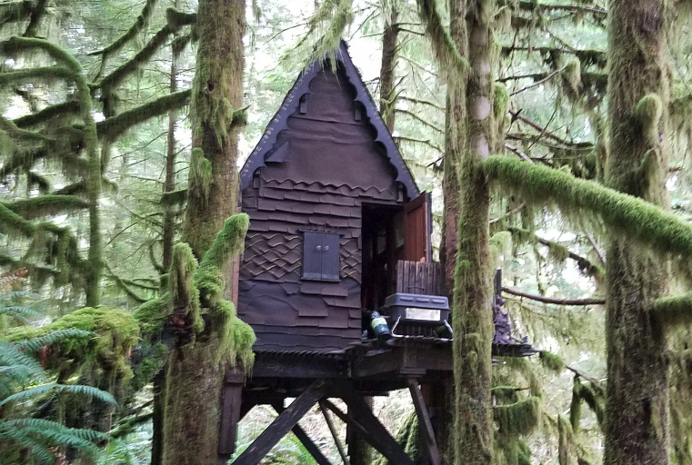 Tree House, Snoqualmie National Forest