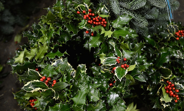 List of Christmas Classics to Watch This Holiday Season