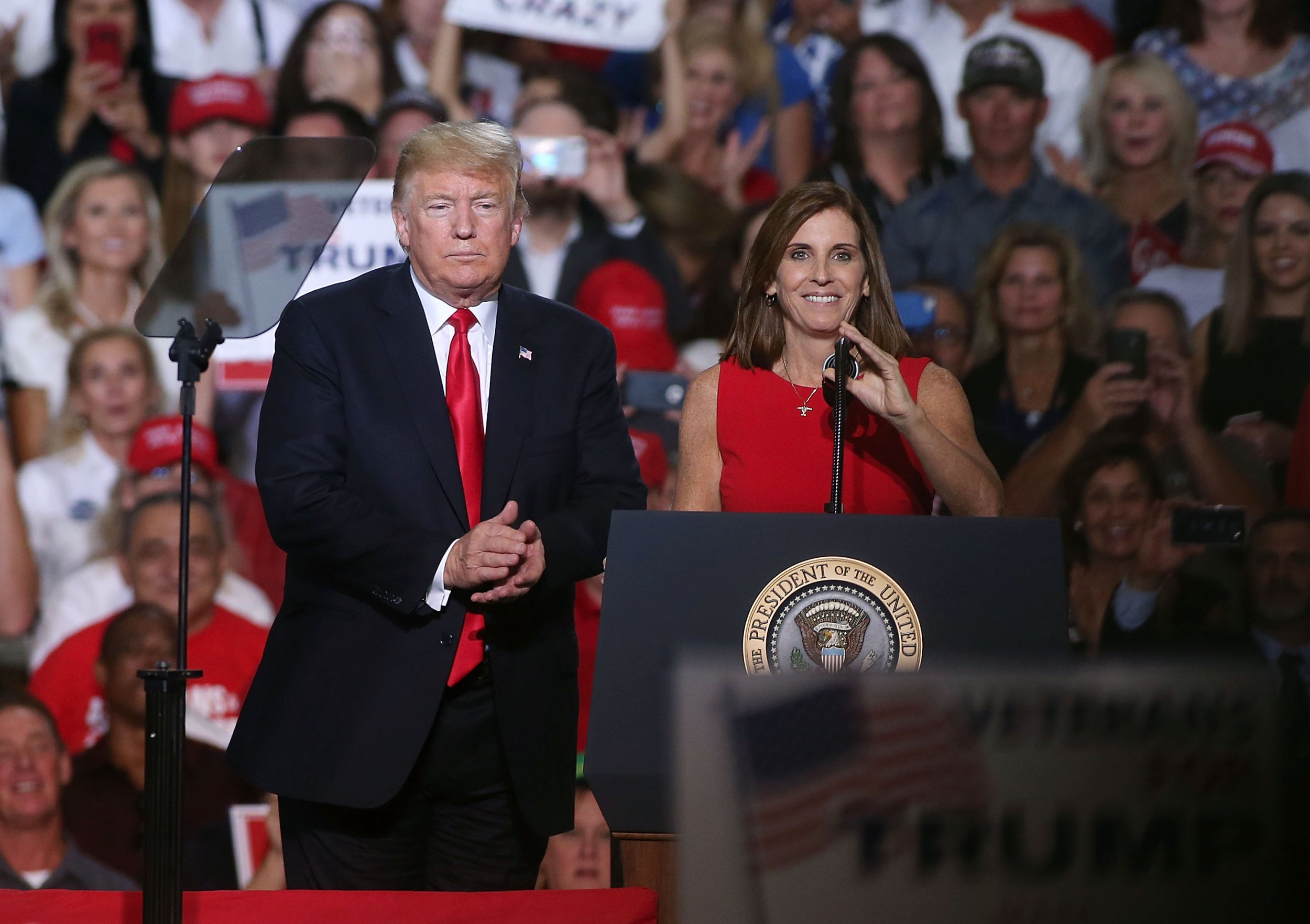 martha, mcsally, arizona, senate, seat, republicans