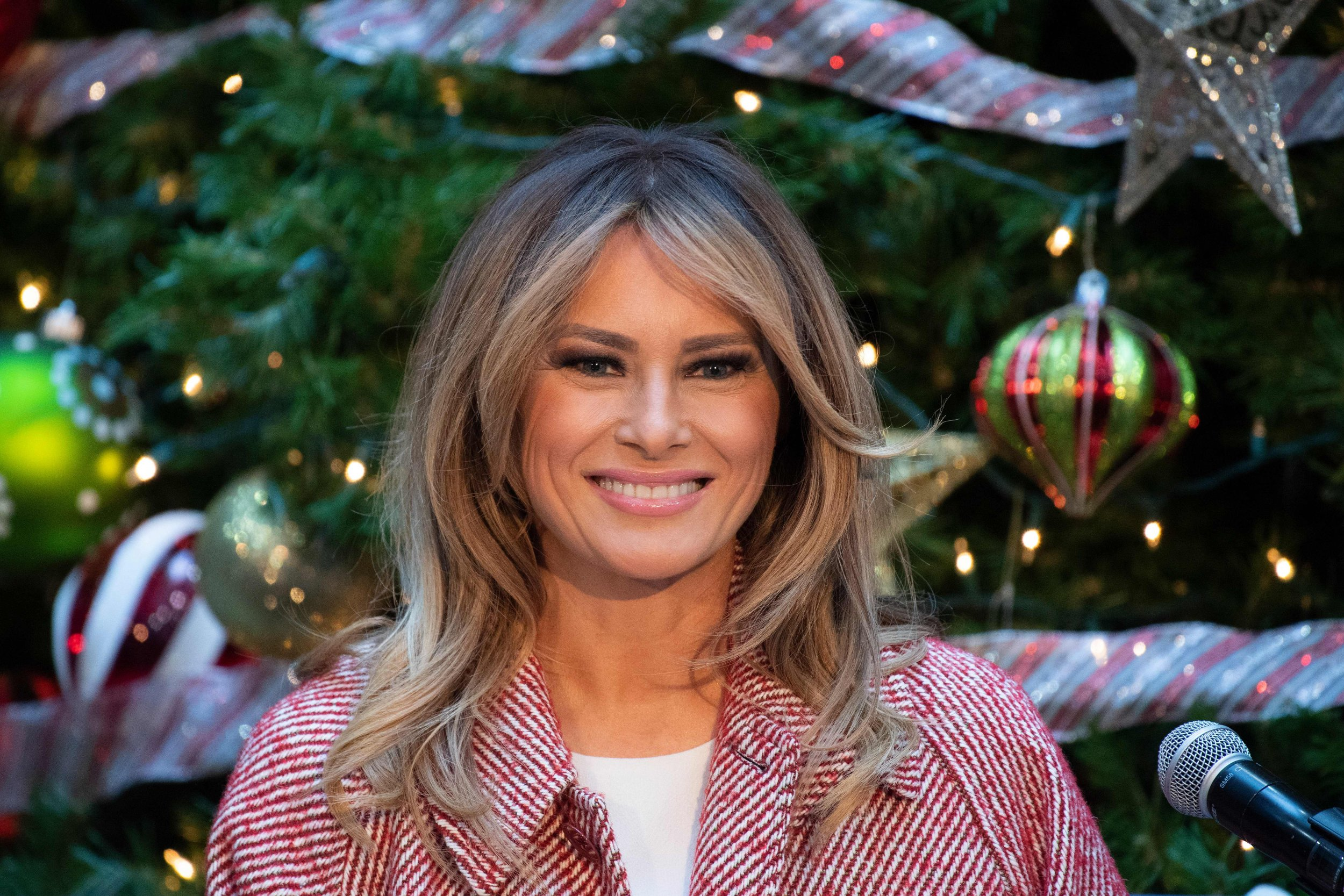 Melania Trump in 2018: Battling Affair Reports, Embracing ...