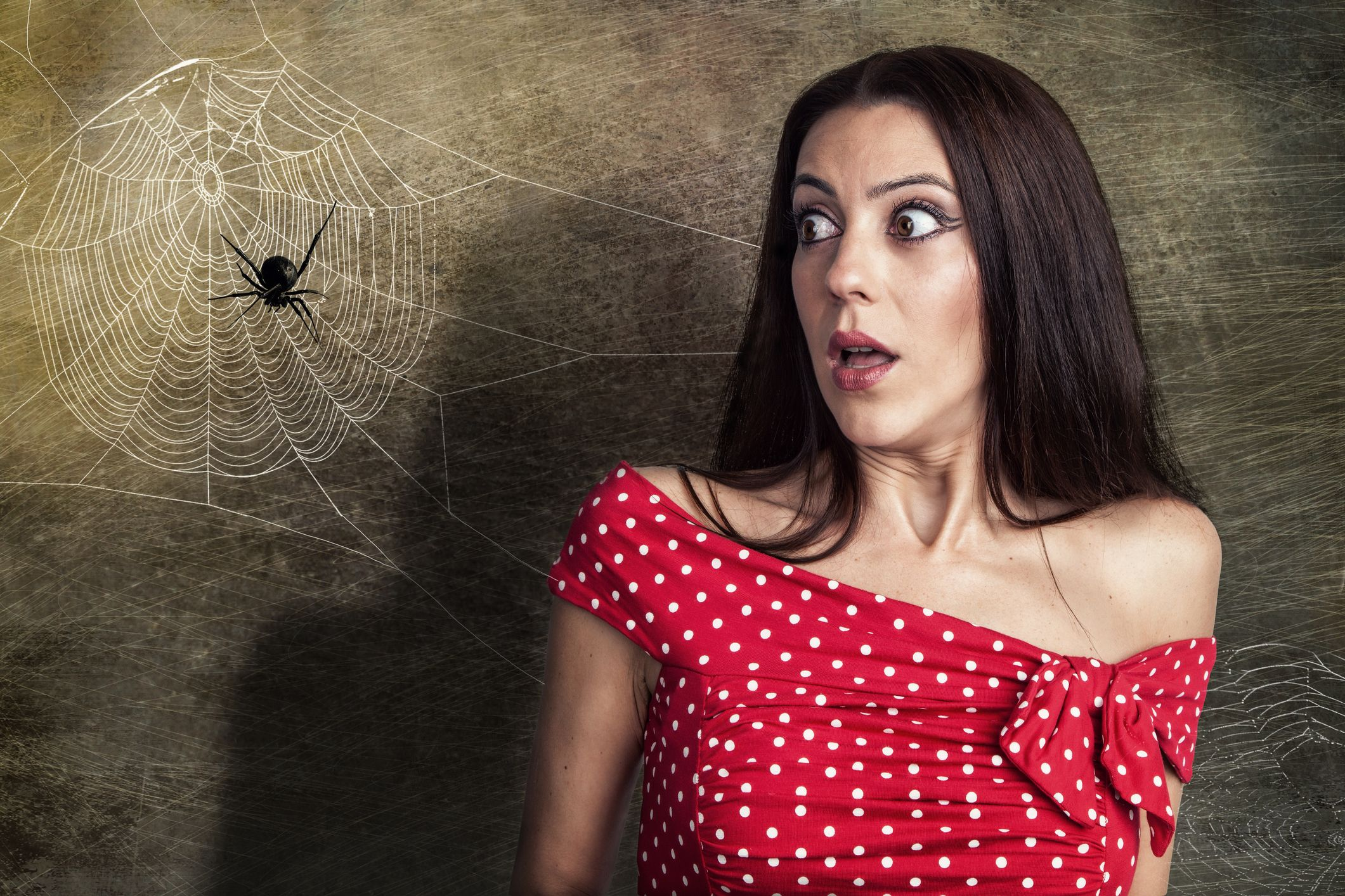 kill spider