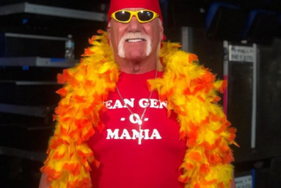 hulk hogan mean gene wwe
