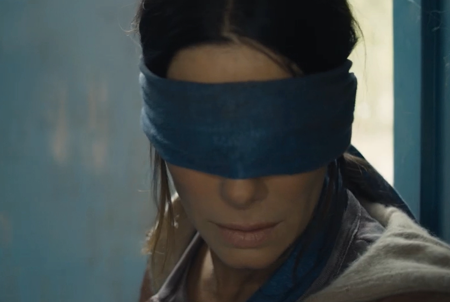 bird box footage