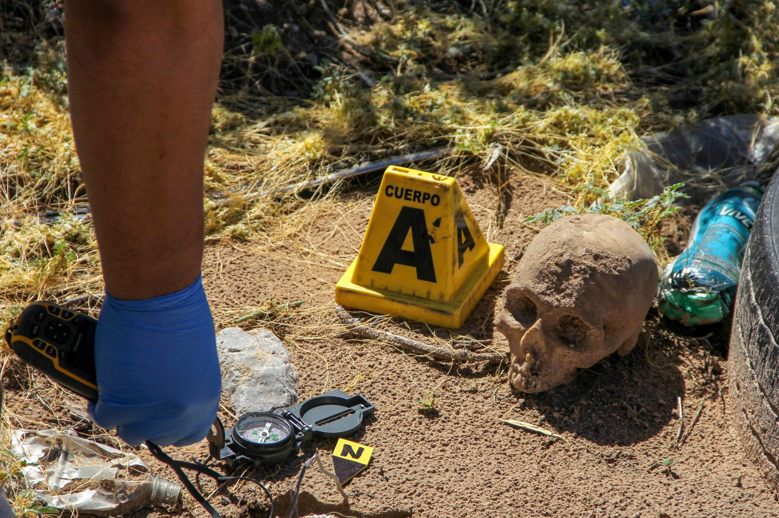 Mexico's Murder Rate Is so High It Has Altered the Life