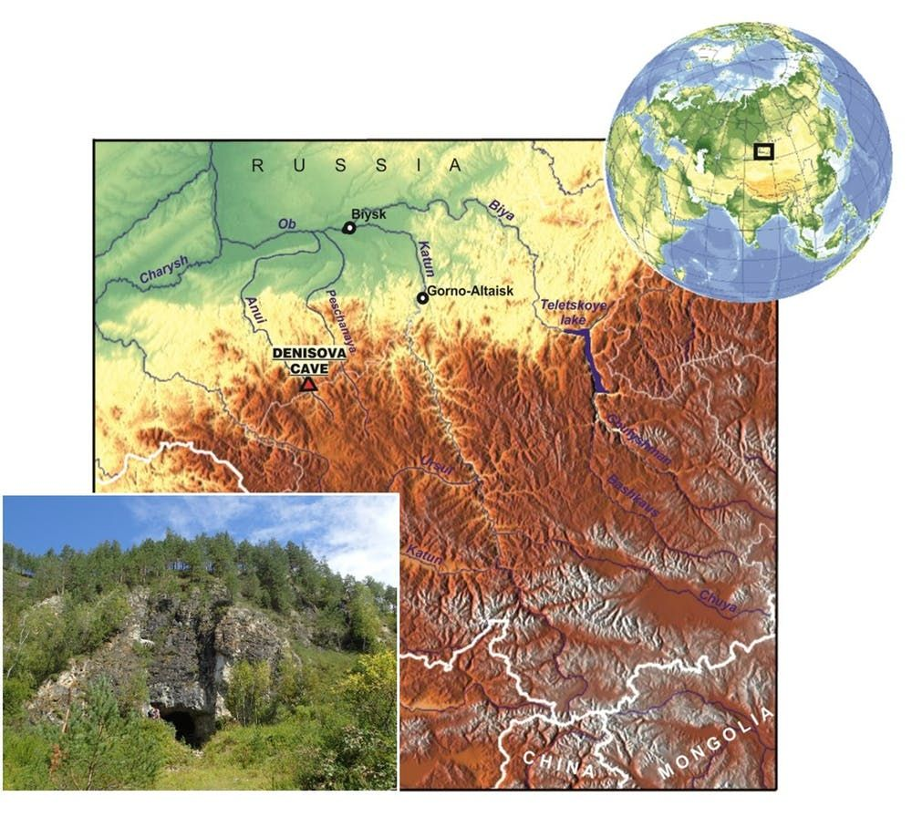 Denisovan, Early Humans, Ancient Humans, Anthropology, Siberia
