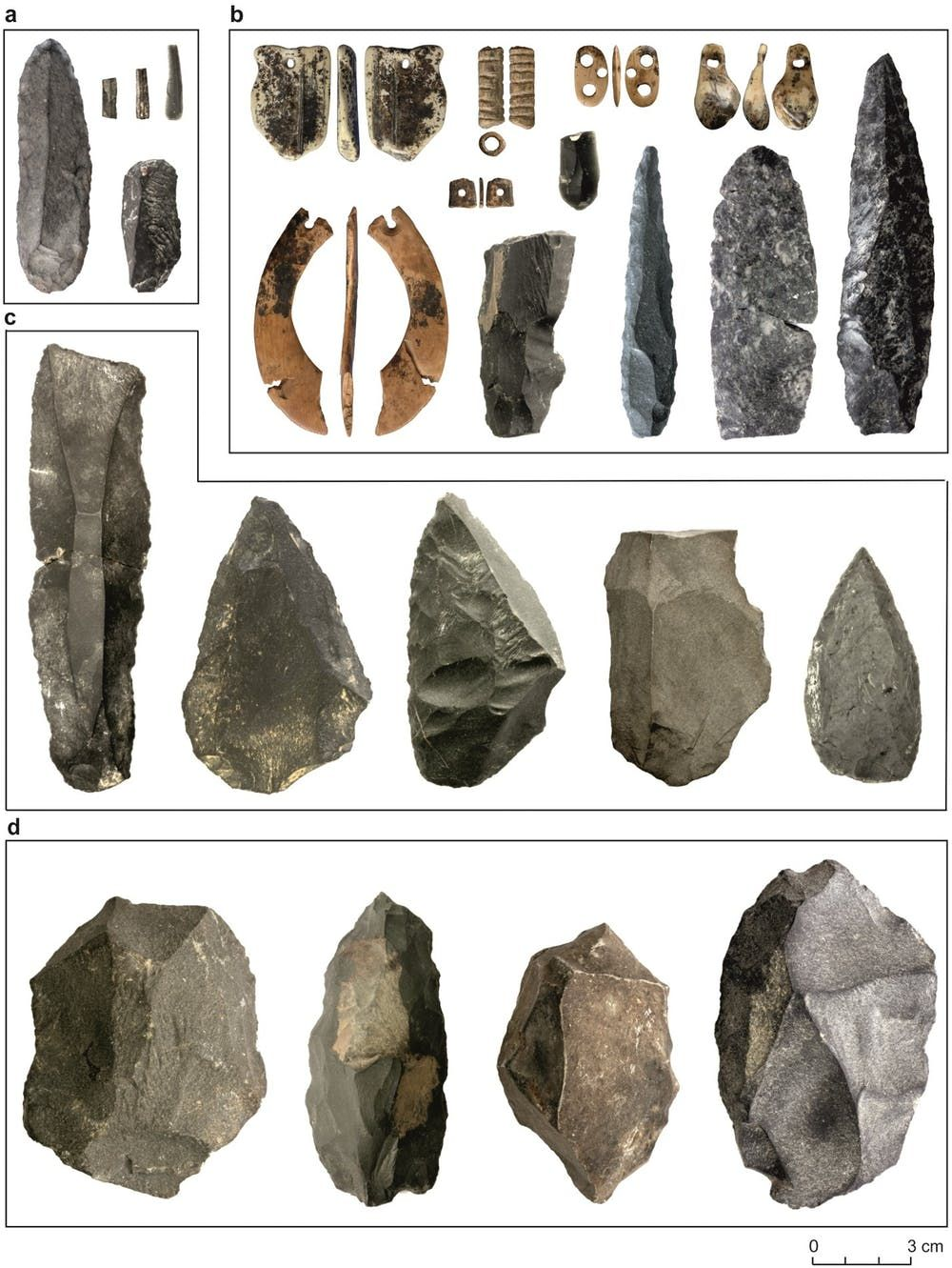 Denisovans, Early Humans, Ancient Humans, Anthropology, Archaeology