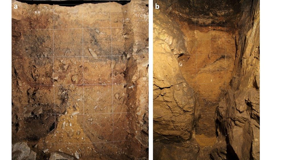 Denisovans, Ancient Humans, Early Humans, Archaeology, Anthropology, Science