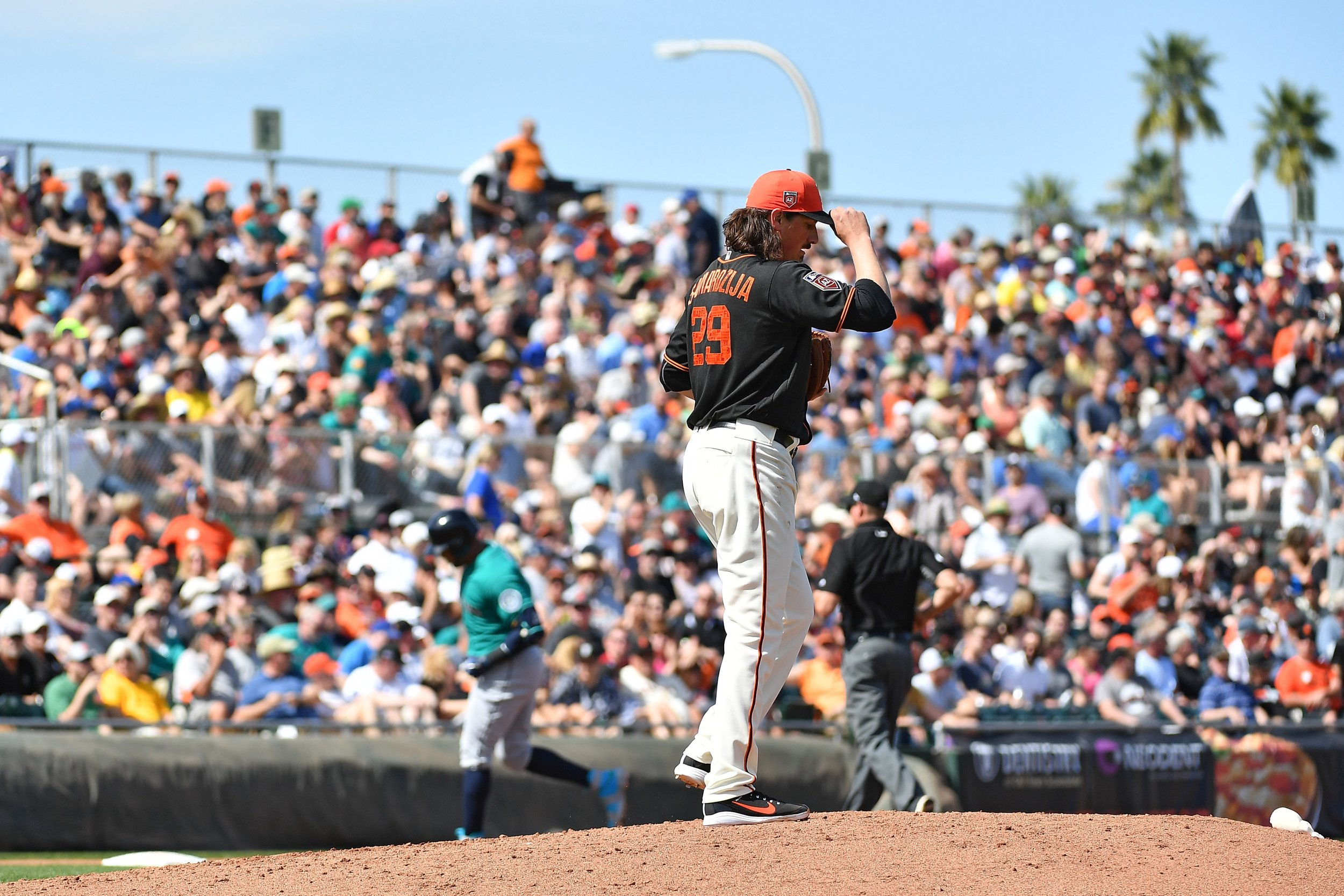 spring training sf giants