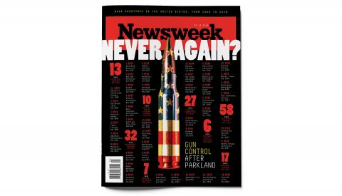 FE_Guns_COVER