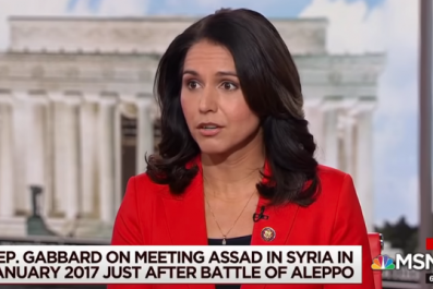 tulsi gabbard morning joe