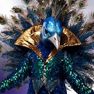 masked, singer, revealed, peacock, was donny, osmond, jail, arrested, wig neil, patrick, harris, gay, amazing, technicolor, dreamcoat, clue