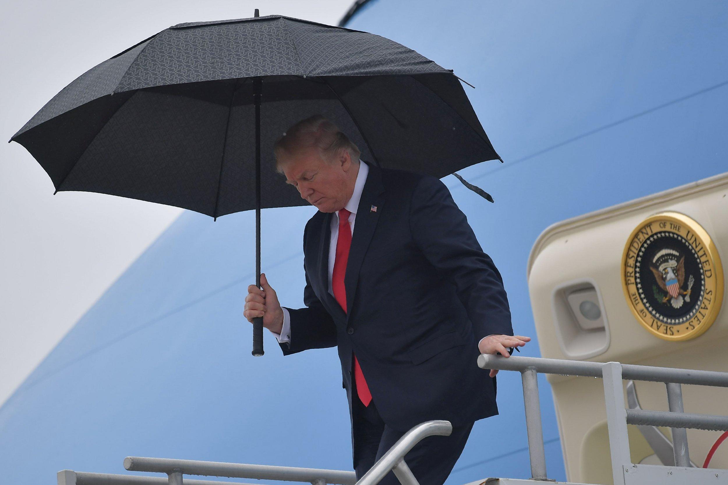 Donald Trump rain hair Amy Klobuchar Ana Navarro