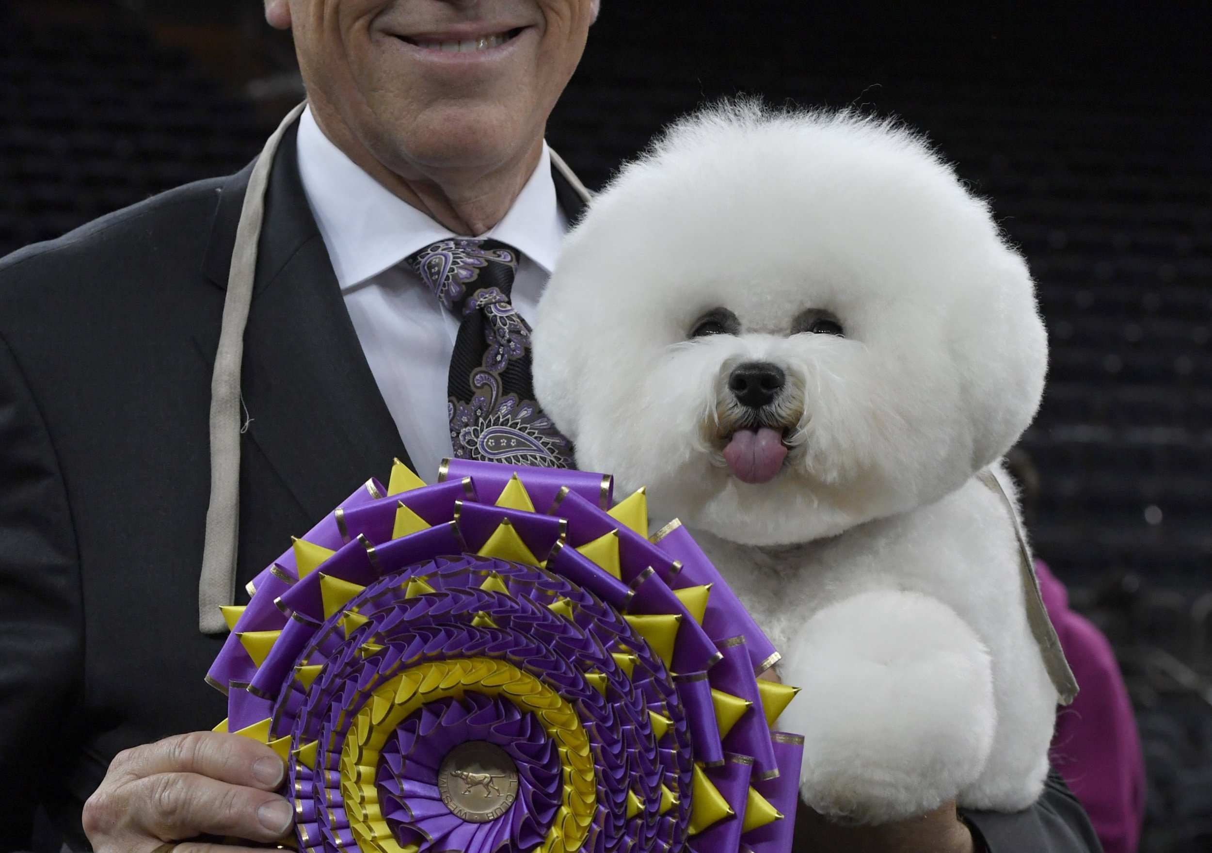 Westminster Dog Show 2019: Best in Show Judge Dishes on What