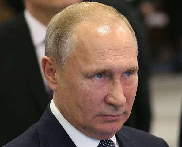 russia, president, vladimir, putin, election, americans
