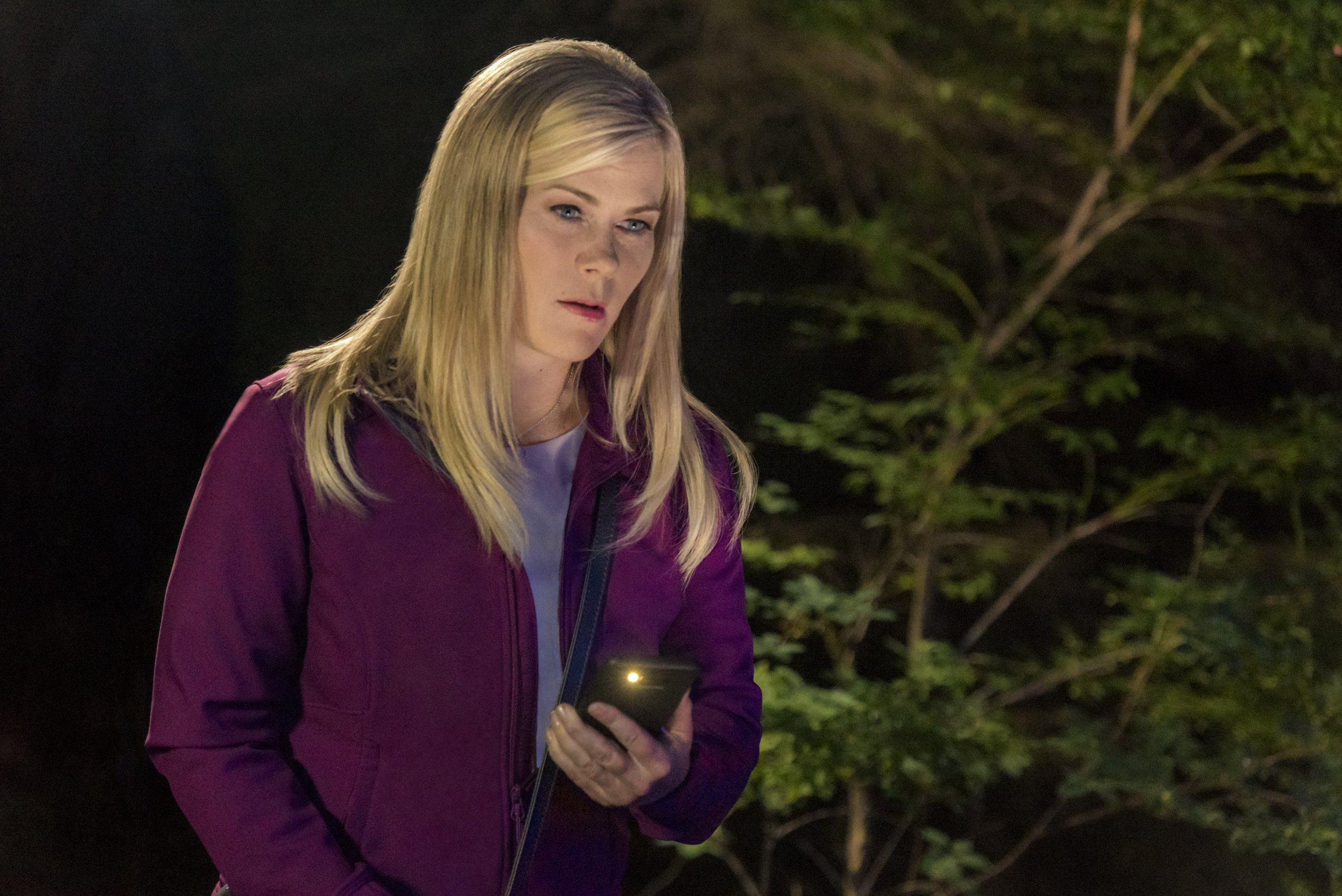 'Days of Our Lives' Star Alison Sweeney's Love of True Crime Podcasts Inspired Her New Hallmark Series 'Chronicle Mysteries'