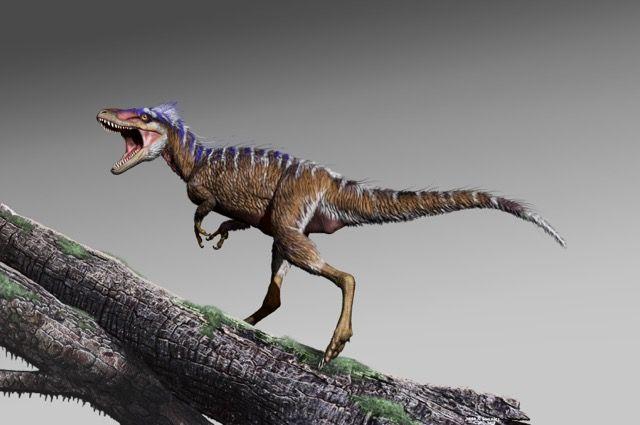 t. rex, dinosaur, Moros intrepidus