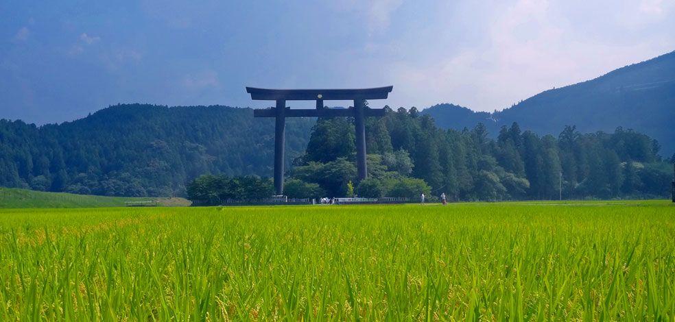 Best Walking Tours - Trek the Kumano Kodo Pilgrimage Trail in Southeastern Japan
