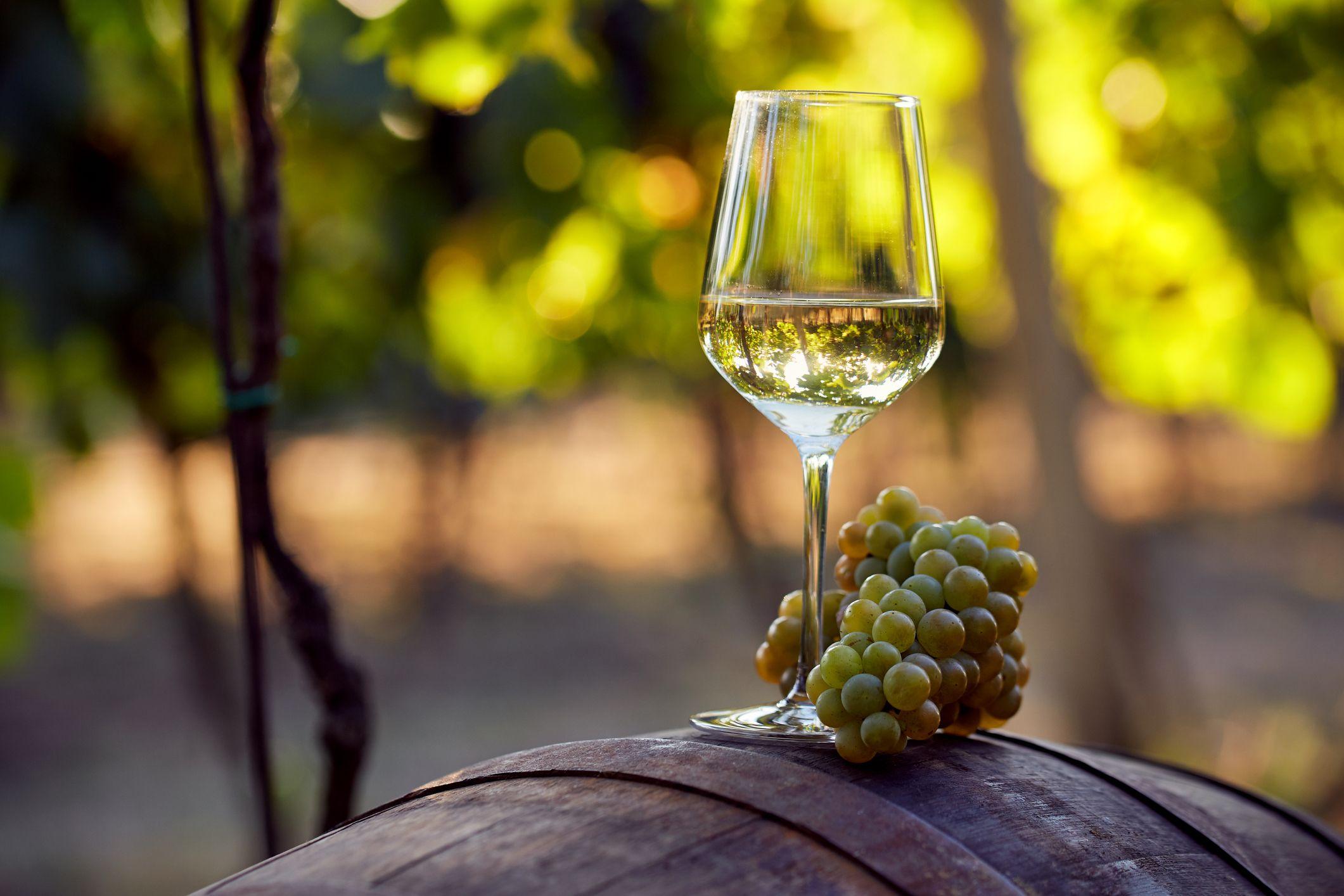 Natural vs Organic Wine 1