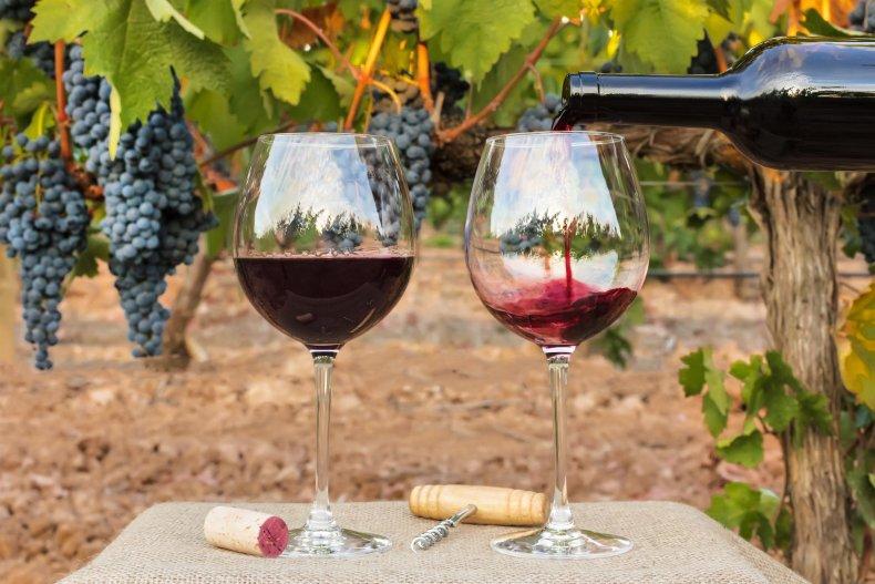 Natural vs Organic Wine 3