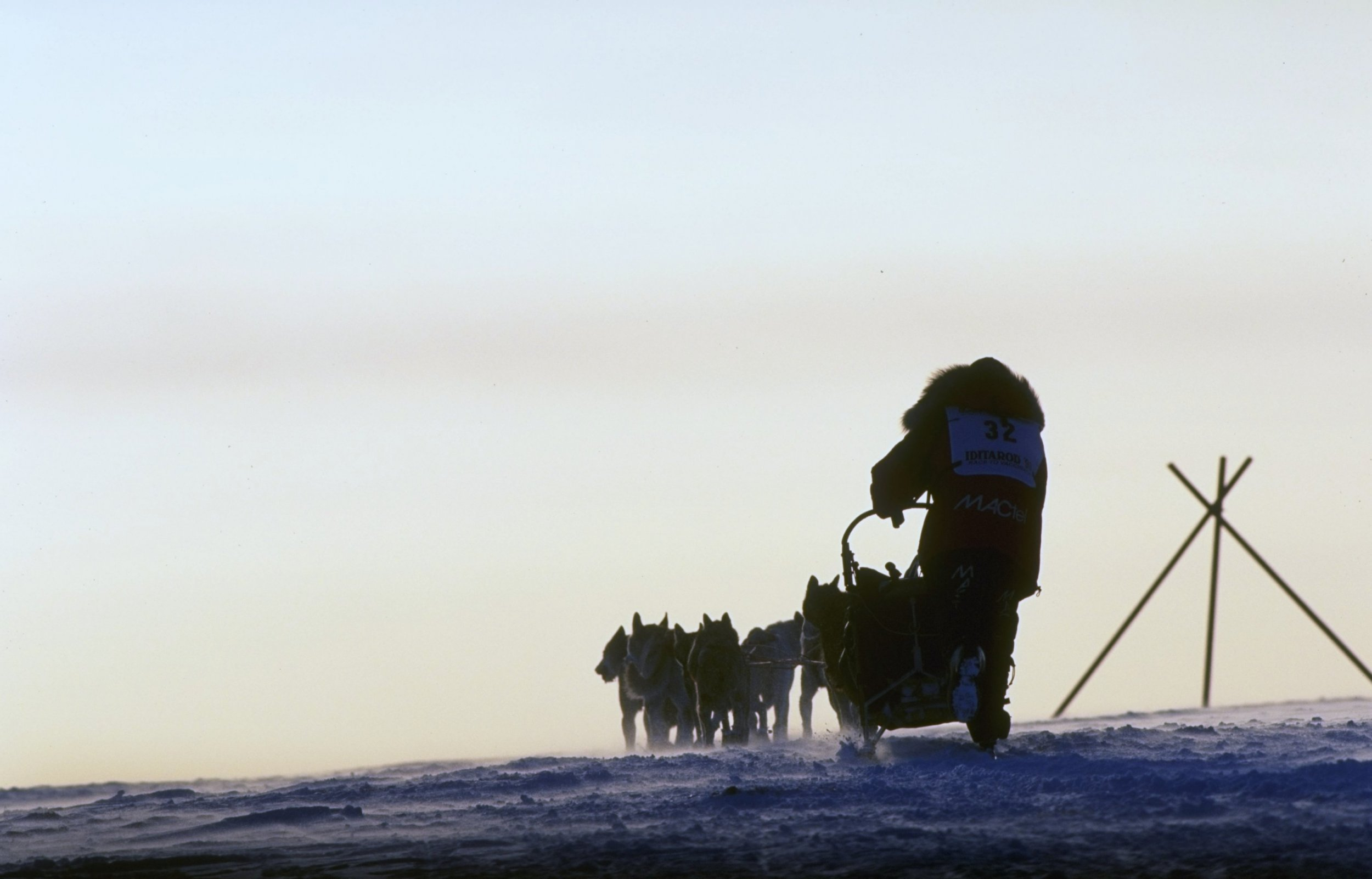 iditarod race dog sledding alaska nome anchorage mitch seavey