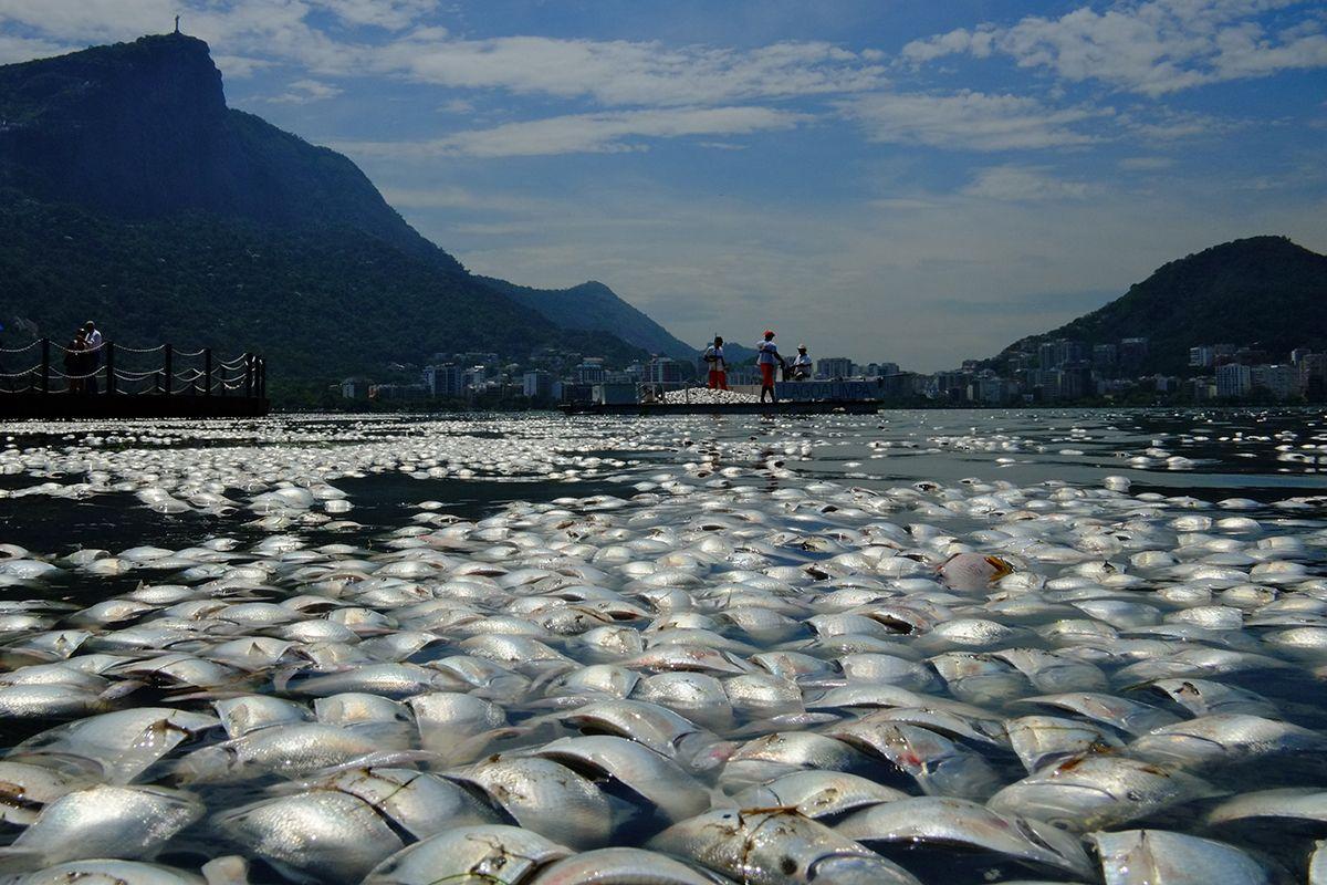 08 coastal pollution
