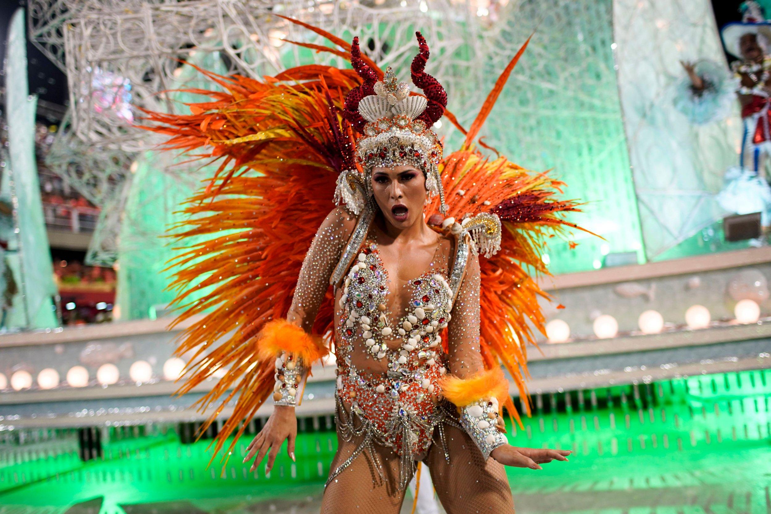 Rio de Janeiro Carnival 2019 Paraíso do Tuiuti2