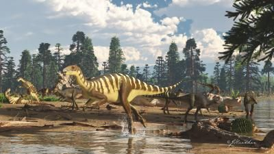 New 'wallaby' dinosaur discovered in Australia. Here's what it looked like