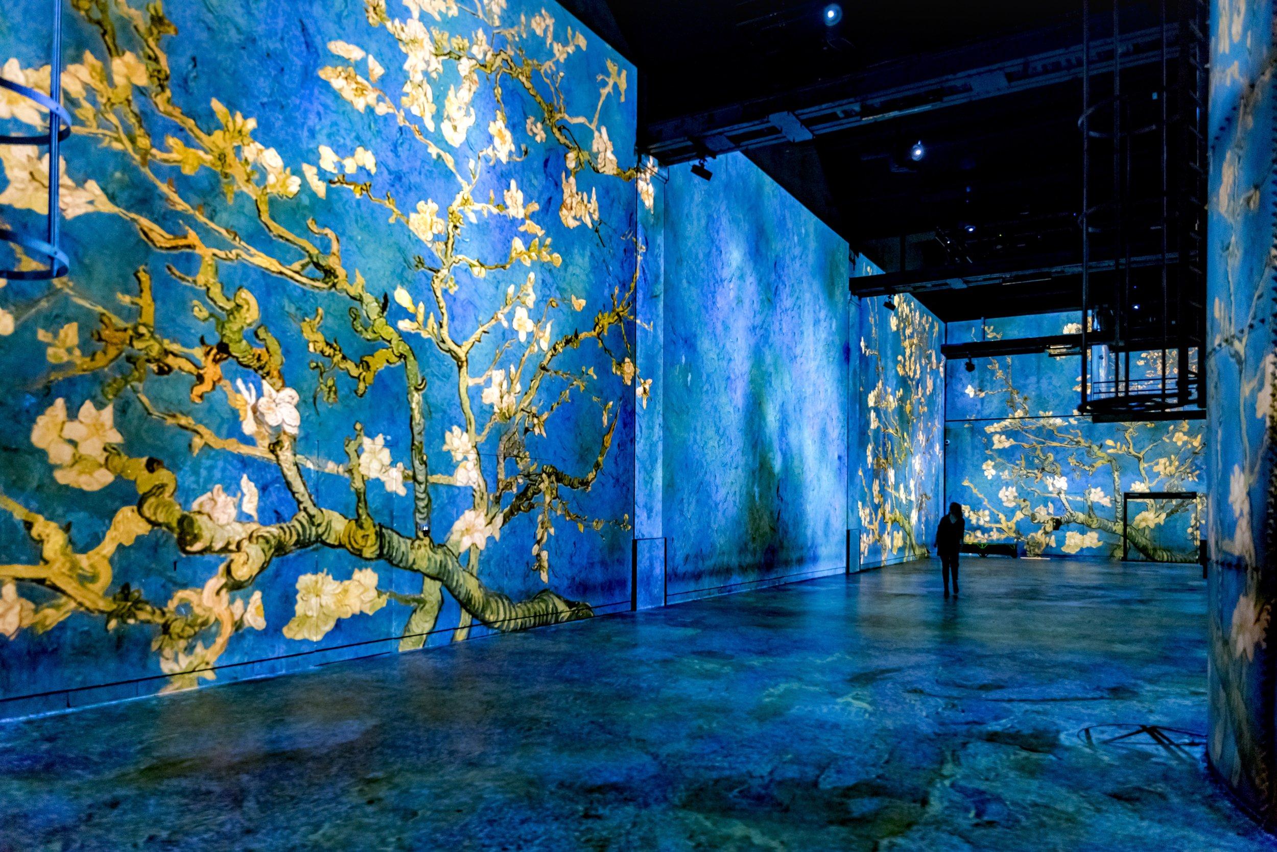 2 Van Gogh Starry Night