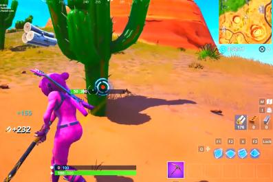 Fortnite cacti head