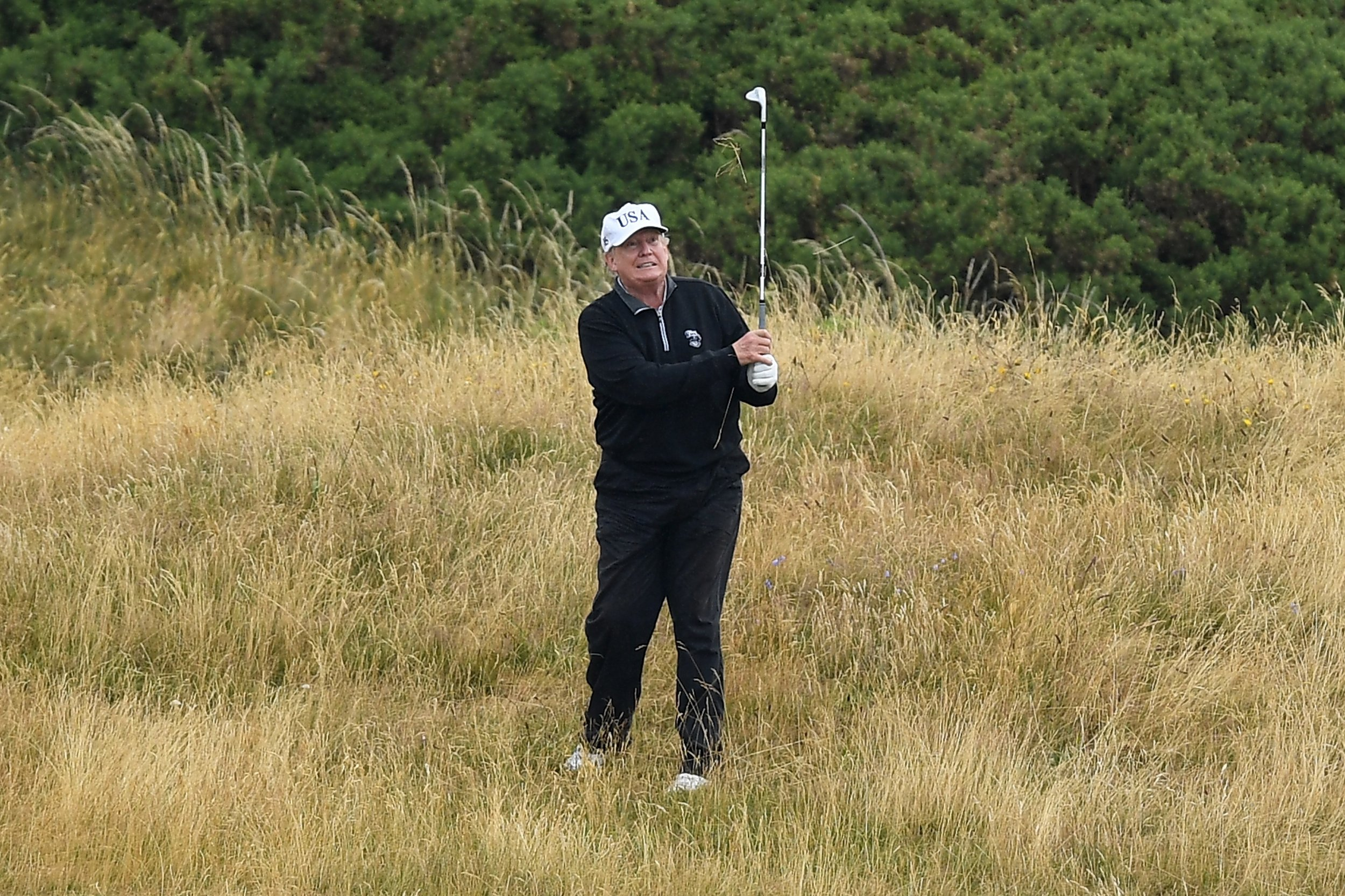 newsweek.com - Ewan Palmer - Donald Trump reportedly removed trees from golf courses to help him win