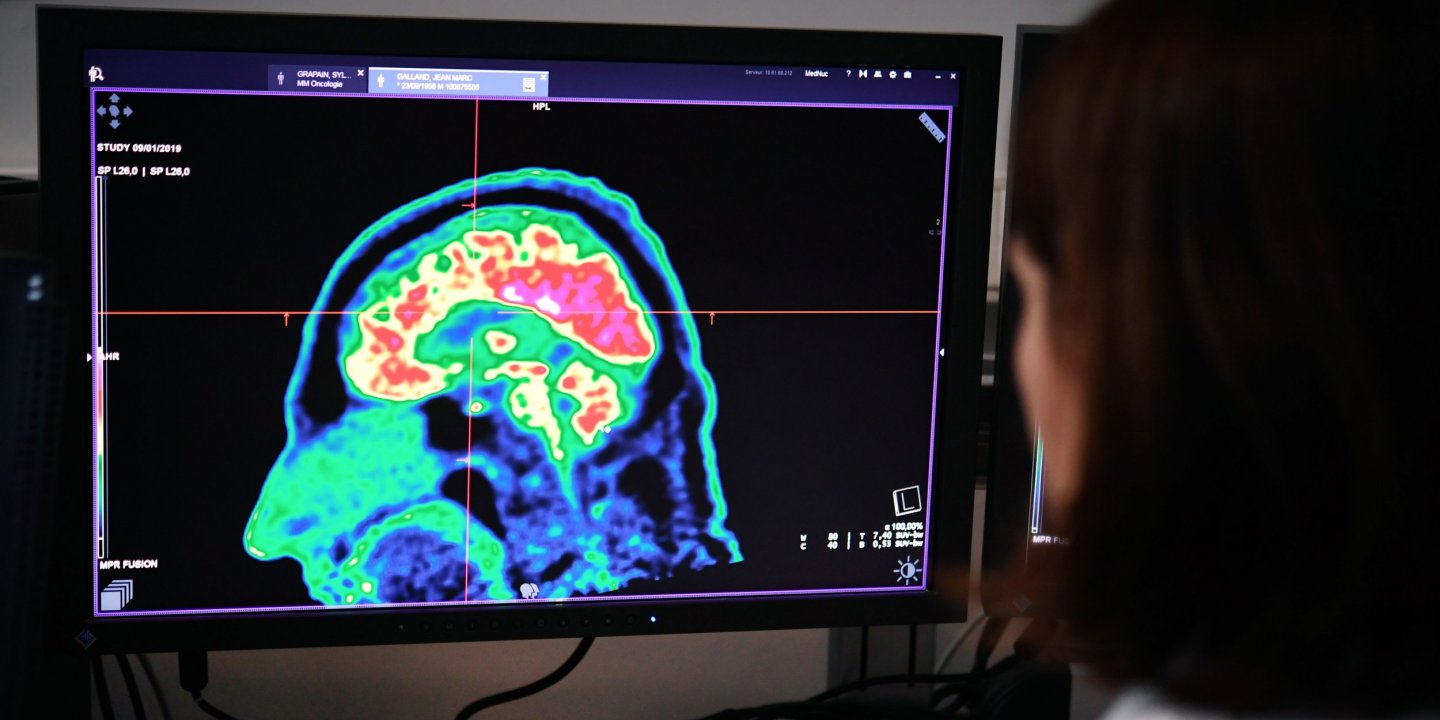 Brain Imaging Studies Seek Signs Of >> Parkland And Sandy Hook Suicides What Scientists Know About How