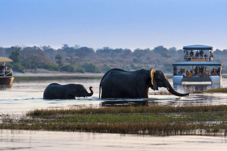 Zambezi Queen River Cruise- Chobe River, Botswana and Namibia