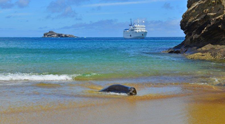 Quasar Expedition Cruise- the Galapagos Islands, Ecuador