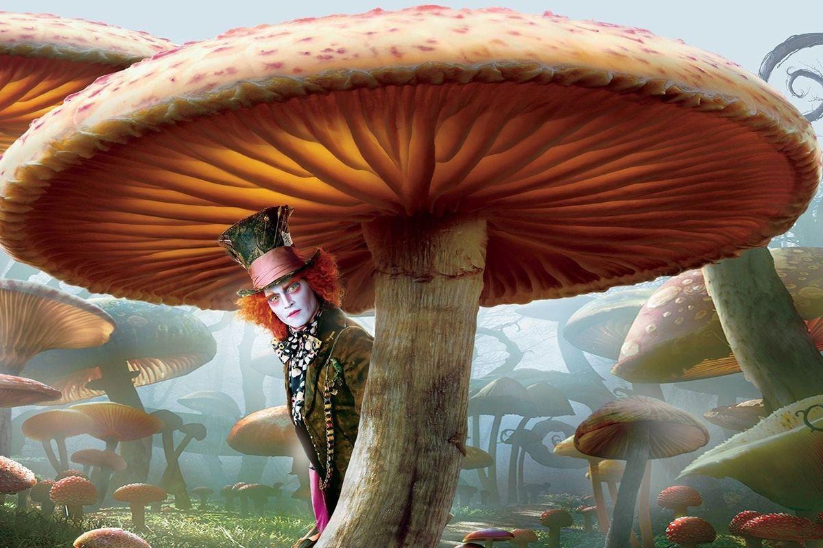 05 Alice in Wonderland