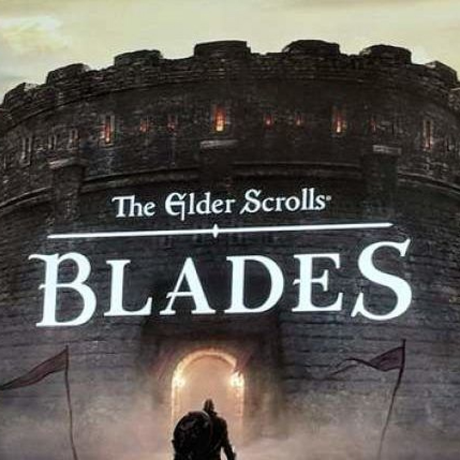 Elder Scrolls: Blades' Release Date, Price, Compatibility List and More
