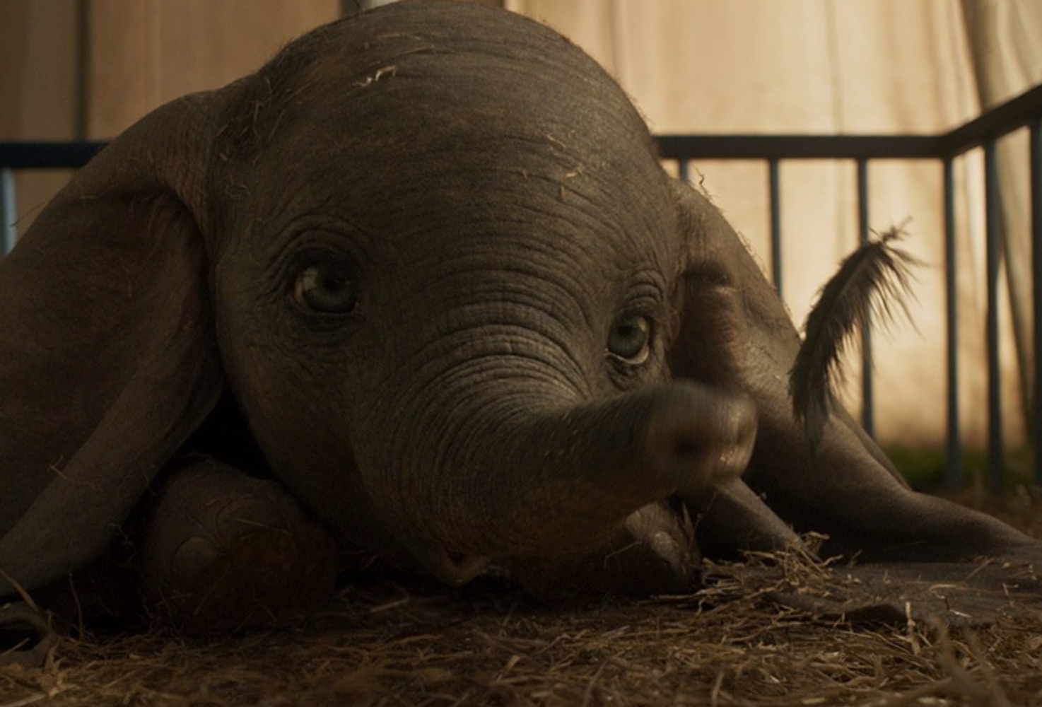 What Critics Are Saying About 'Dumbo'