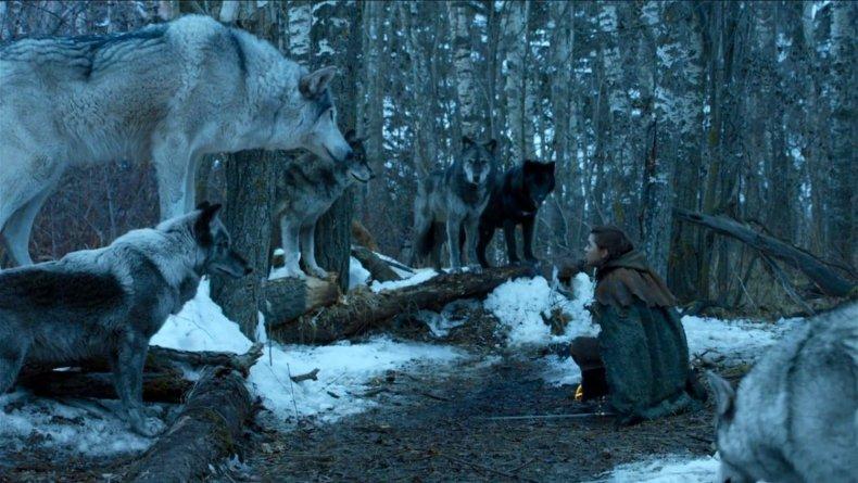 game-of-thrones-season-8-direwolves-nymeria