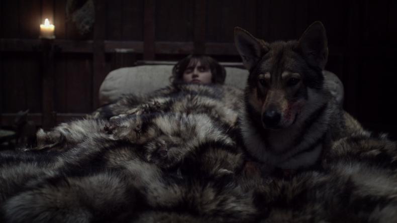 game-of-thrones-direwolves-summer-bran-stark