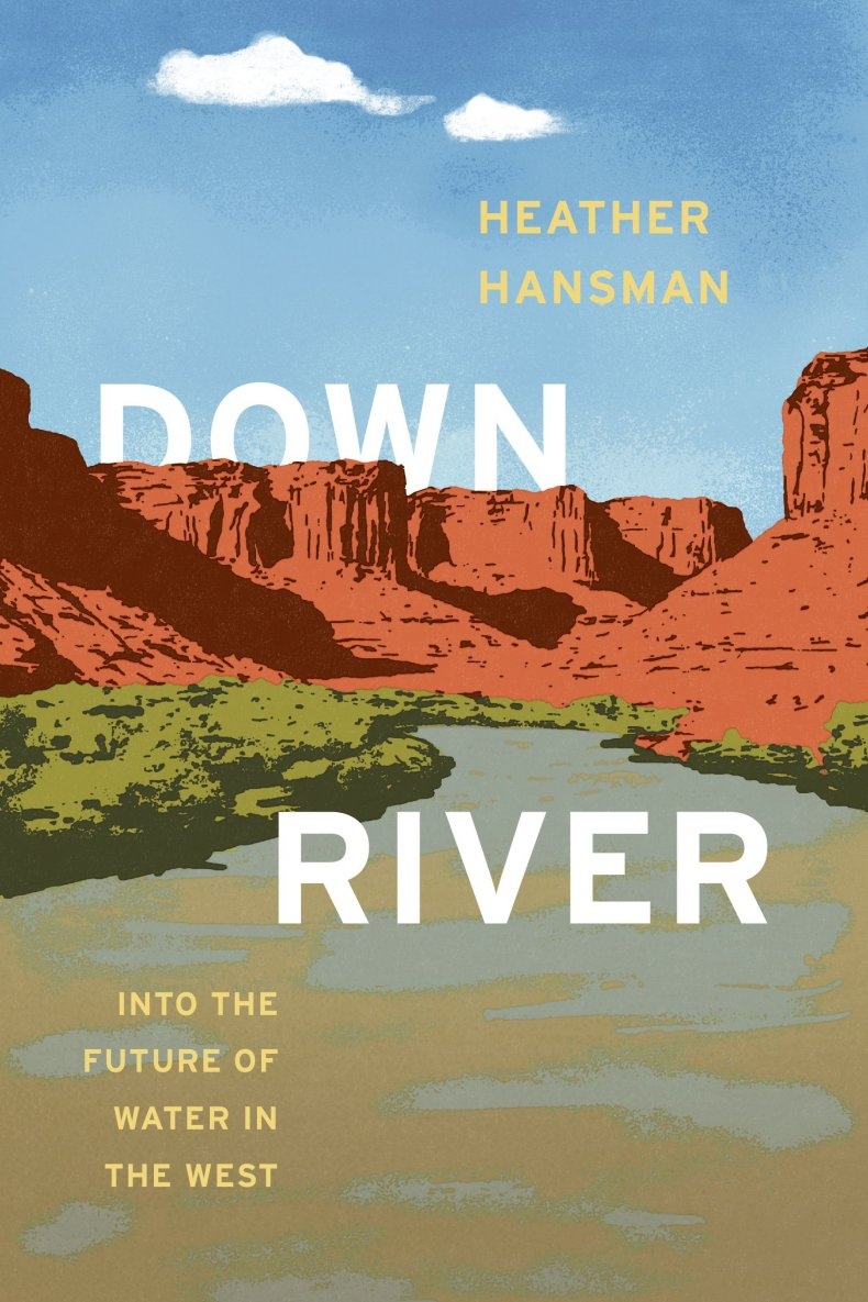 Downriver: Risk, Fear and the Future of Water in the West Cover 3