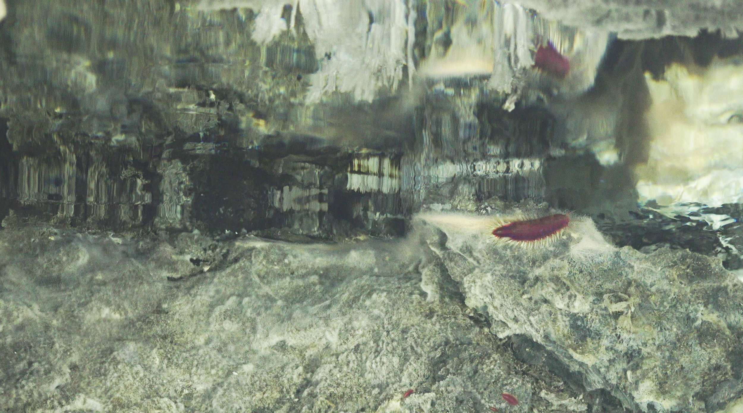 mirror, hydrothermal fluid