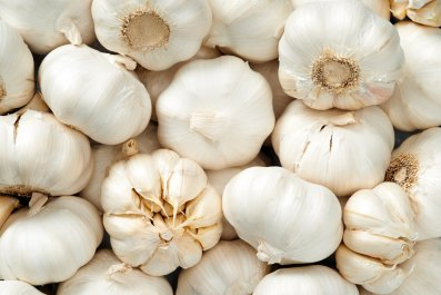 garlic stock