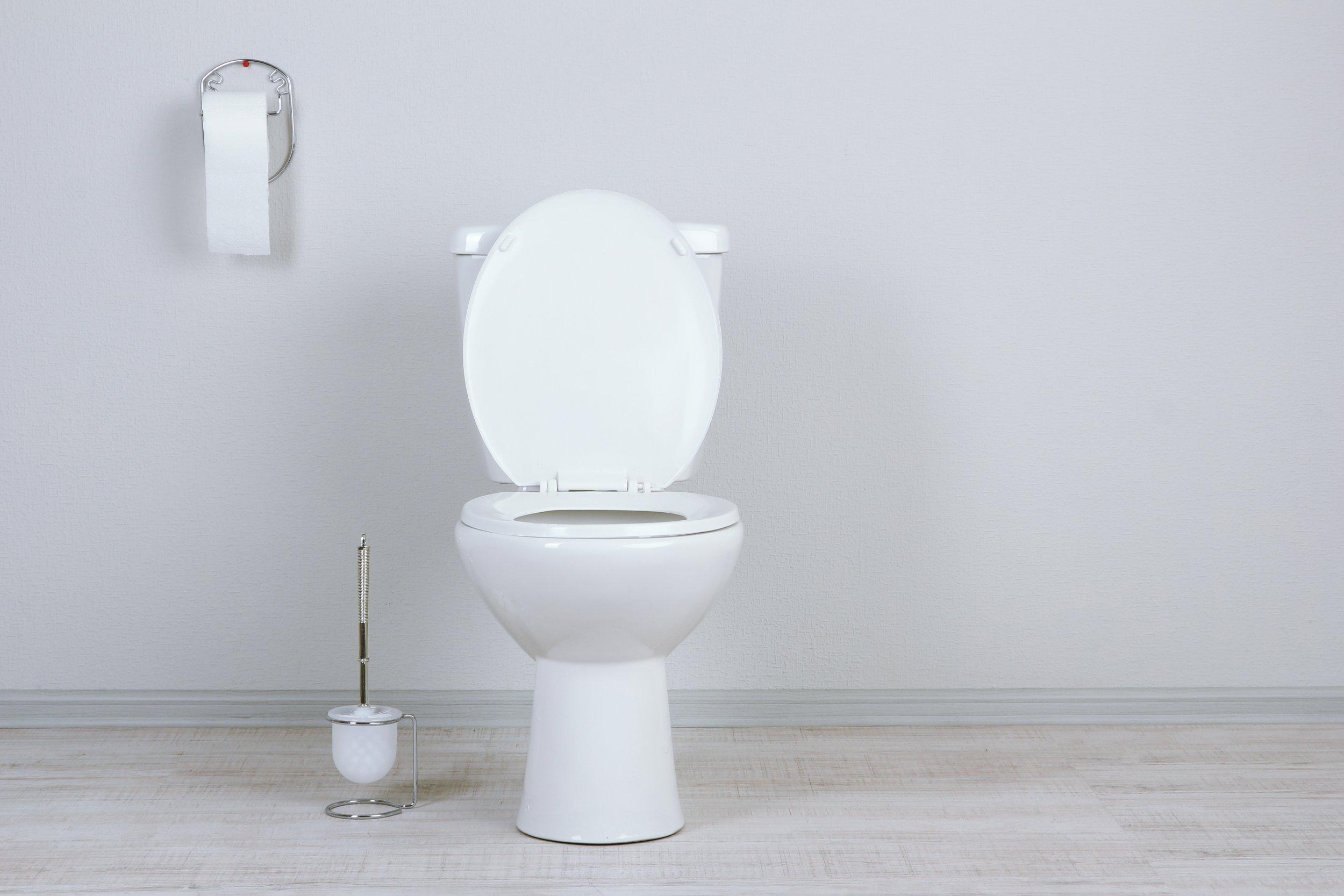 Florida Man, toilet
