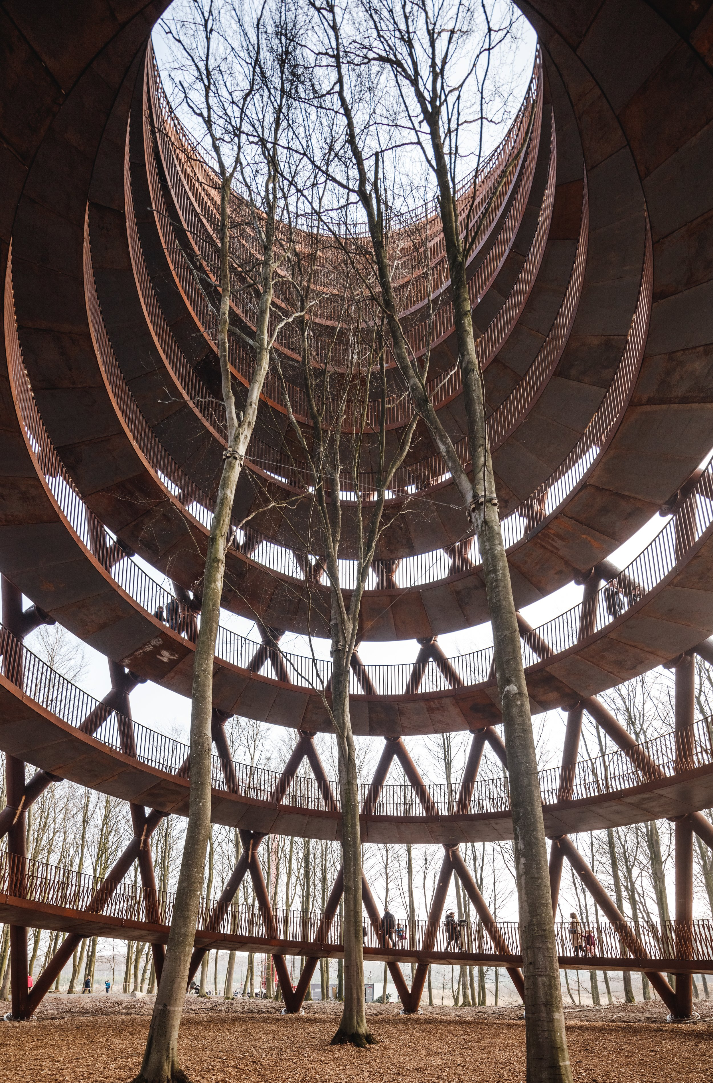 Walk Among The Treetops At This 148 Foot Quot Forest Tower Quot In